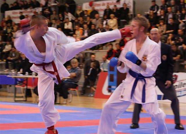 Tournoi des 4 Nations 2008 (France-Belgique-Pays Bas-Allemagne)