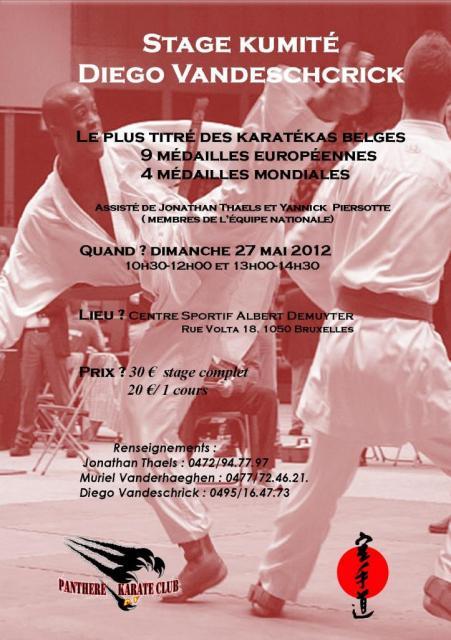 diego-stage-kumite-6.jpg
